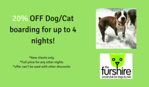 20% off DogCat Boarding!